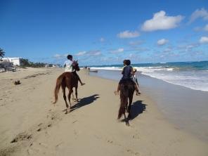 Little boys on horseback