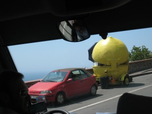 Driving along the coast you will see lemon stands