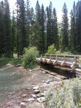 Mom's bridge