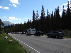 parking HELL. we had to walk a LONG LONG way up hill to get to Chateau Lake Louise