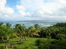 Gorgeous view from Drambuie Estates