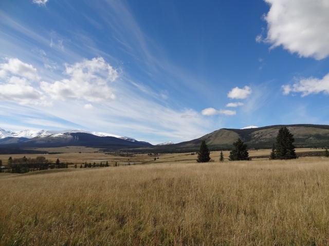 Nature's Brushstrokes-Ya Ha Tinda Ranch Alberta, Canada